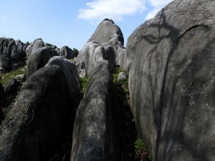 海から隆起して出てきた石.JPG