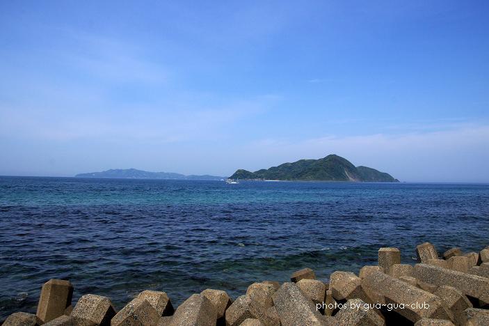 海でミサゴ探し.JPG