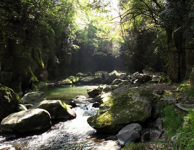 滝から流れる渓流.JPG