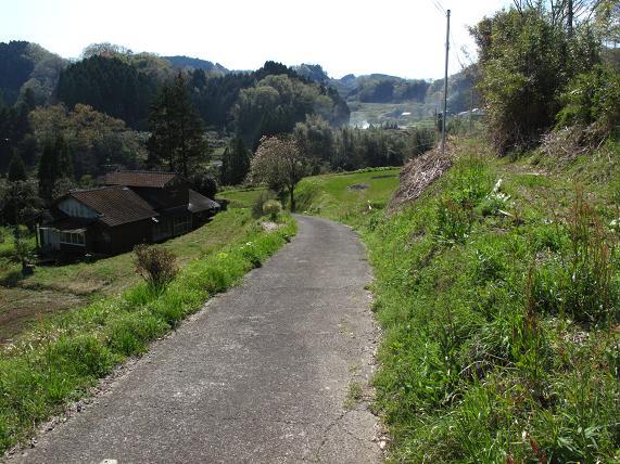 滝までの道.JPG
