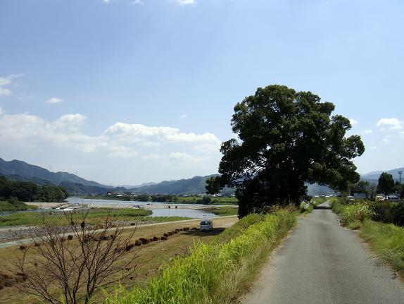筑後川です.JPG