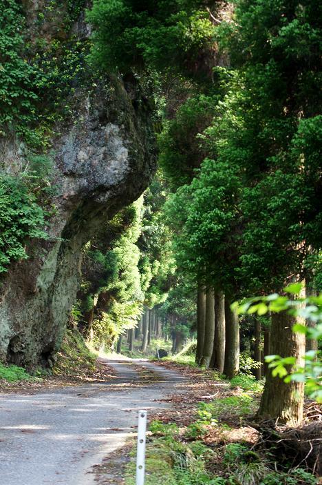 結構な林道です.JPG